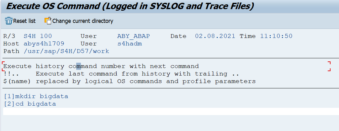 Execute OS Command (Logged in SYSLOG and Trace Files)